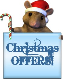 xmas offers at soft soles